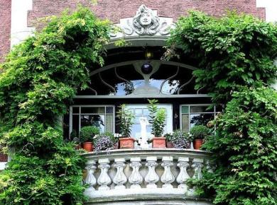 Оформление балконов вьющимися цветами
