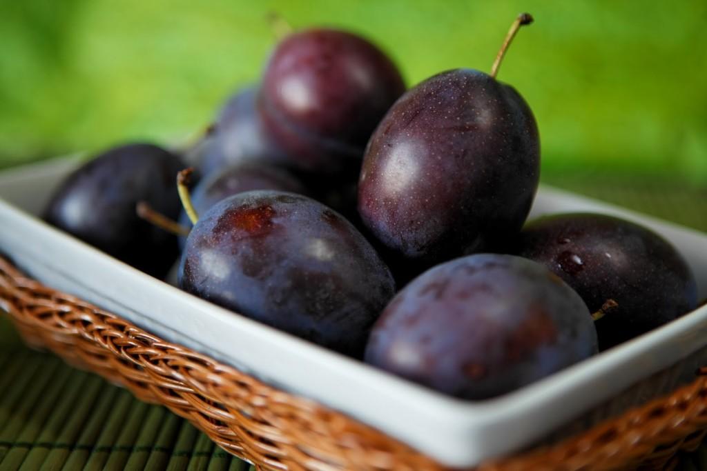 Слива – популярное садовое дерево, плоды которого не только вкусны, но и чрезвычайно полезны
