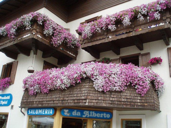 Создайте собственный оазис на балконе!