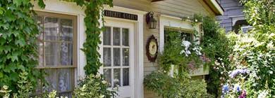 Плющ в качестве декора фасада дома